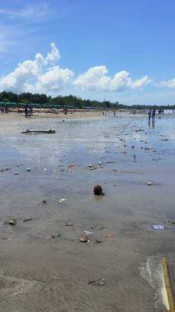 Rosani Hotel: Right, this hotel is close to beach area but look at how trashed the beach is.....
