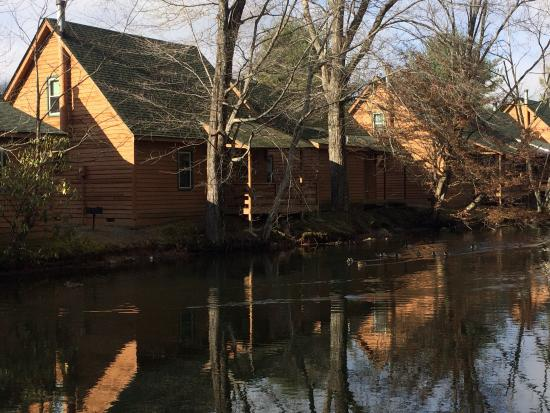 Creekwood Village Resort: Creekwood