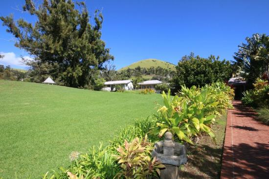 Jacaranda Inn: View of the grounds, looking up at Lily Cottage in center.