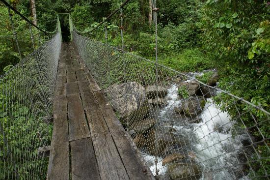 Sendero Los Quetzales (The Quetzales Trail): Bridge over the Caldera river