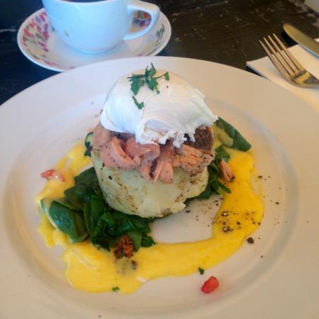 Yum Yum Tree Cafe: Hot Smoked Salmon Charlotte