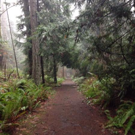 Nanaimo, Canada: Well maintained paths