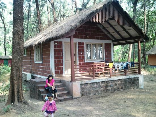 Jungle Lodges Devbagh Beach Resort Devbagh Karnataka
