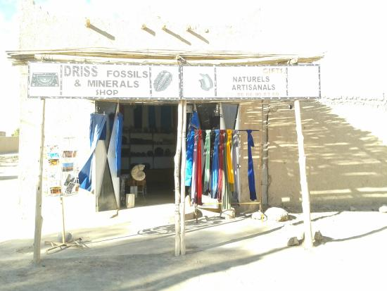 Driss Fossils & Minerals Shop