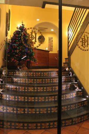 Hotel Potenza: Entrada y recepción