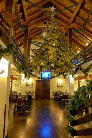 Taverna Sarbului : The hanging real Christmas tree was rather fun attraction