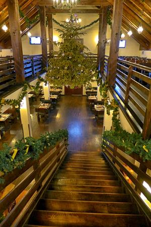 Taverna Sarbului : A look from upstairs down