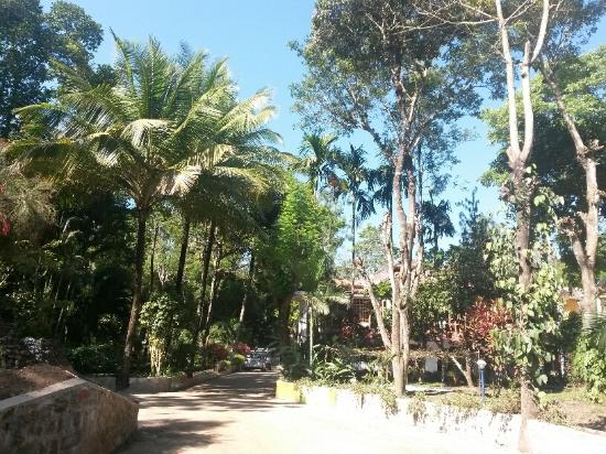 Coorg County Resort: Entrance Gate