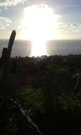 Ristorante Il Gabbiano: la vista dal giardino del ristorante