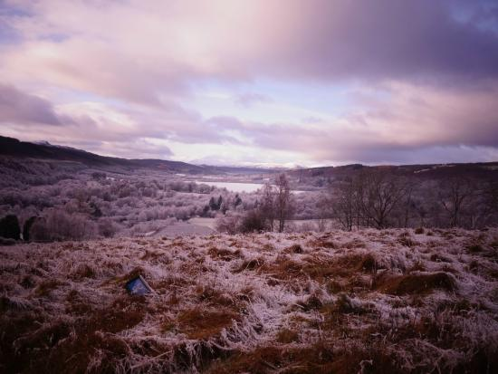 Torcroft Lodges : A short walk from the Lodges, looking out over Glenurquhart