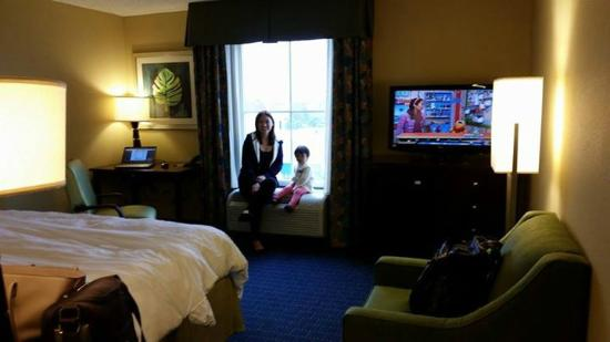 Hampton Inn & Suites Orlando Airport @ Gateway Village: Nice view from our suite :)