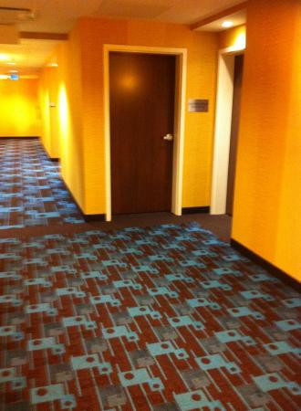Fairfield Inn & Suites Moncton: Hallway