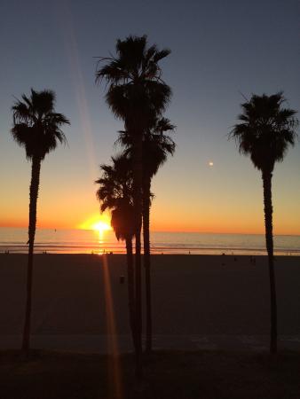 Venice On The Beach Hotel: Udsigt fra tagterassen ved solnedgang