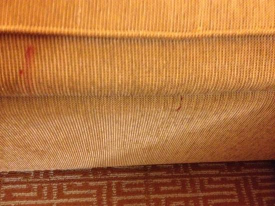 Hyatt Place Charlotte/Arrowood: Stained sofa