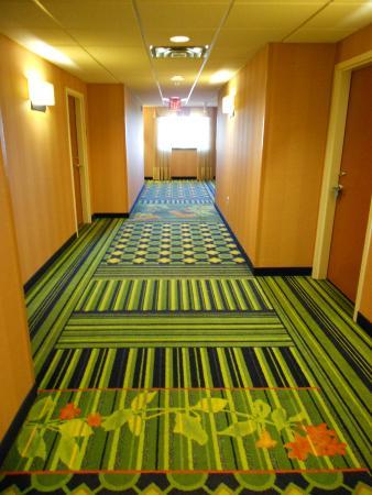 Fairfield Inn & Suites Miami Airport South : Corredor de acesso aos quartos