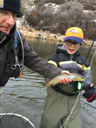 Park City On The Fly : brown trout on the Provo River