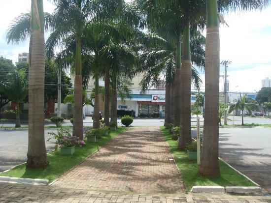 Catedral Metropolitana de Goiânia: Bela alameda antecede a entrada da Catedral