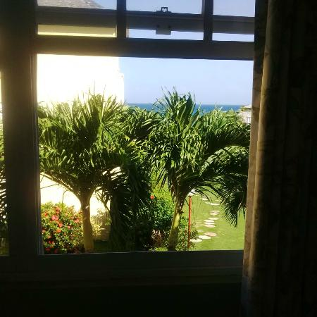 Sea Palms: Woke up with this view