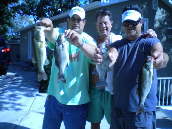 Point Randall Resort: white bass catch
