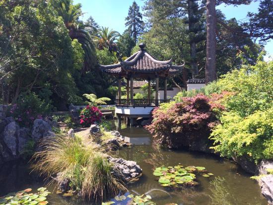Chinese Gardens Nelson
