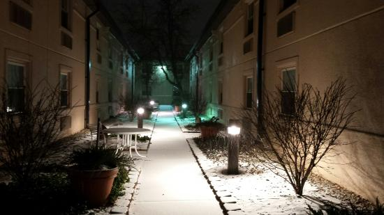 Indianapolis Conference Center Hotel: Courtyard on a snowy night