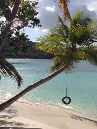 Gibney Beach : Tire swing