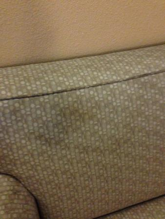 Microtel Inn & Suites by Wyndham Quincy: couch stain