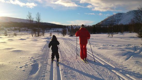 Venabu Fjellhotell og Hytter: ski tracks at Venabu