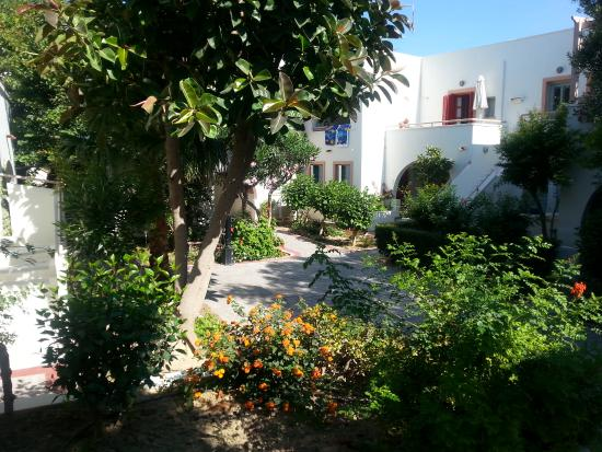 Nissia Kamares Hotel Apartments : The gardens outside oyr room