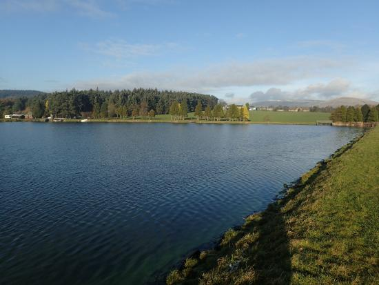 Barnsfold Waters Trout Fishery