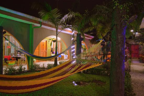 Hostel Backpackers La Fortuna: Hammocks