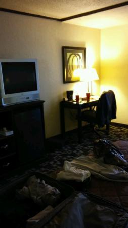 Super 8 Daleville/Roanoke: TV in bedroom