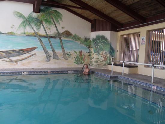 Hawaiian Inn Indoor Heated Pool