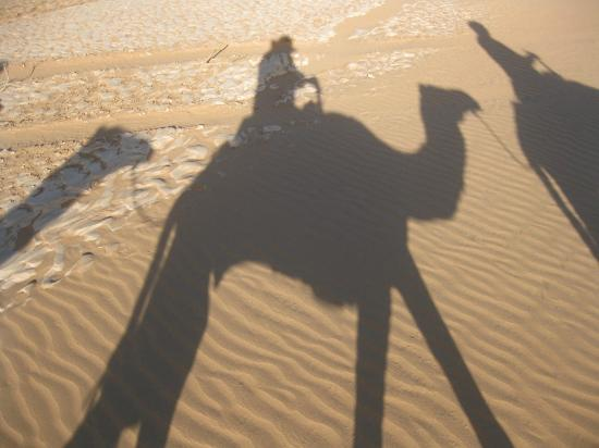 """Hotel Kasbah Sahara Services: This is a """"shadow-selfie"""" of me on a camel!"""