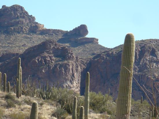 Ajo Mountain Drive: odd rock formation