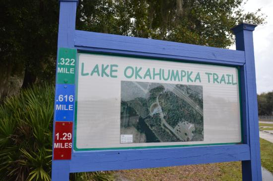 Lake Okahumpka Park : Choose paths that add up to 3 different distances, depending on how far you want to walk