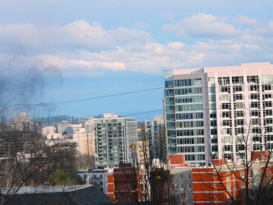 Park Lane Suites & Inn: View near downtown
