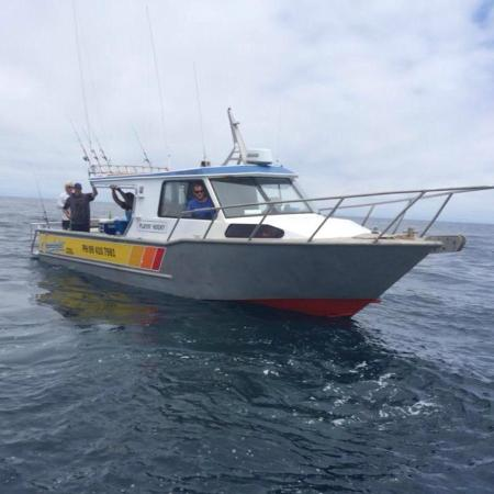 Fishing charters auckland the best auckland fishing for Fishing charters auckland