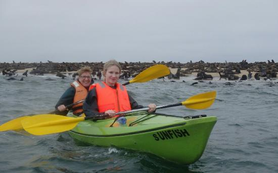 Eco Marine Kayak Tours: Photo sent to us after the trip. Great service!