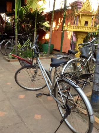 Palm Garden Lodge: the bikes parking corner..