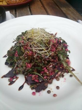 Tree Of Us: Lentil Salad