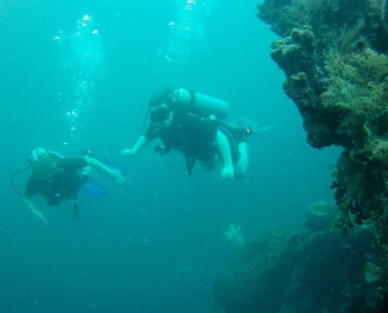 Baruna Dive Center Tulamben: Scubadiving at the Liberty Wreck
