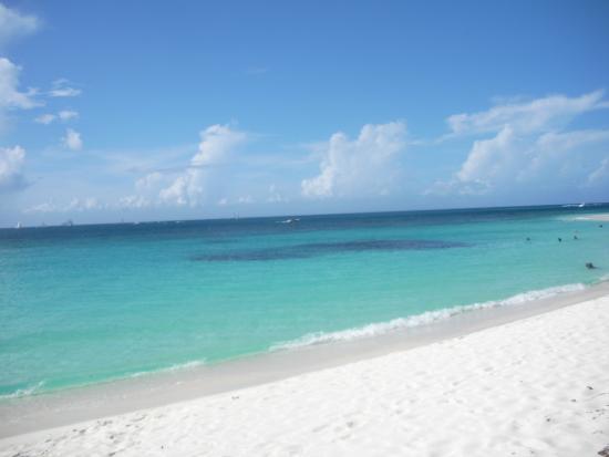 Shoal Bay Villas: shoal bay beach