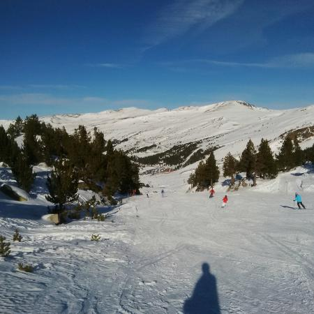 Hotel Llac Negre: excellent Red Run through the trees by the Cubil Lift