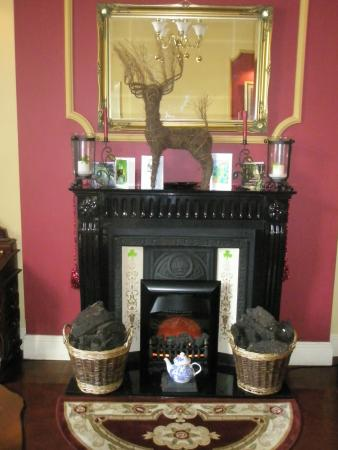 The Boulevard Guesthouse : Fireplace in dining room
