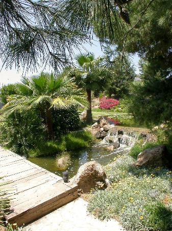 Hotel jardines de amaltea updated 2016 reviews price for Sercotel spa jardines de lorca