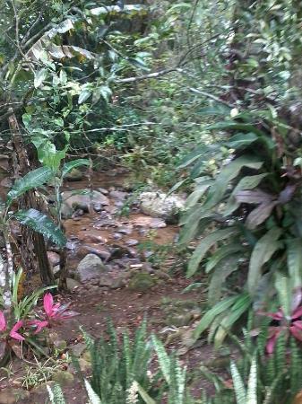 Chales Refugio da Agua Branca : Riozinho dentro da propriedade