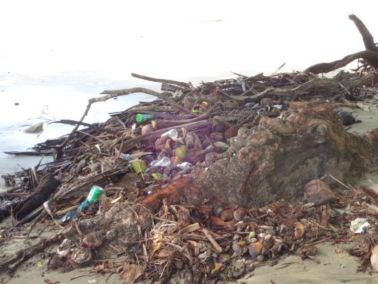Puerto Viejo Beach: beach area