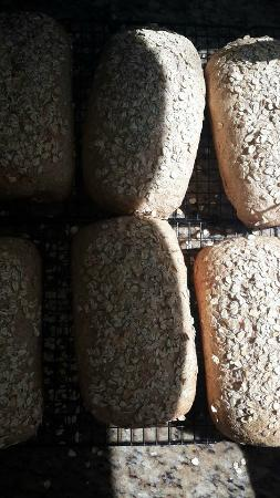 Fantoni's Kitchen : Whole Wheat Oat Bread