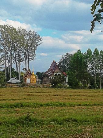 Jasmine Hills Villas & Spa: Temple nearby